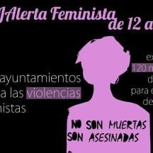 #19jAlertaFeminista